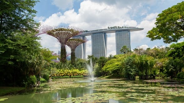 Thumbnail for Singapore Gardens By the Bay Fountain