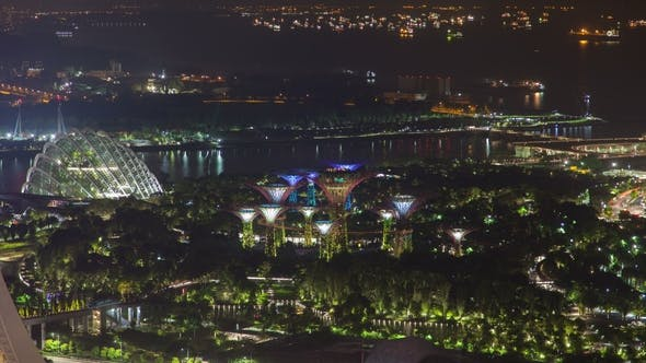 Thumbnail for Singapore Gardens By the Bay with Ships Night
