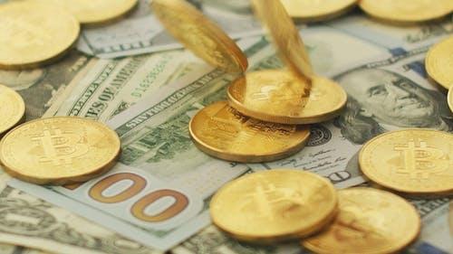 Shiny Bitcoins and Money Bills
