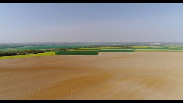 Thumbnail for Fields with Various Types of Agriculture