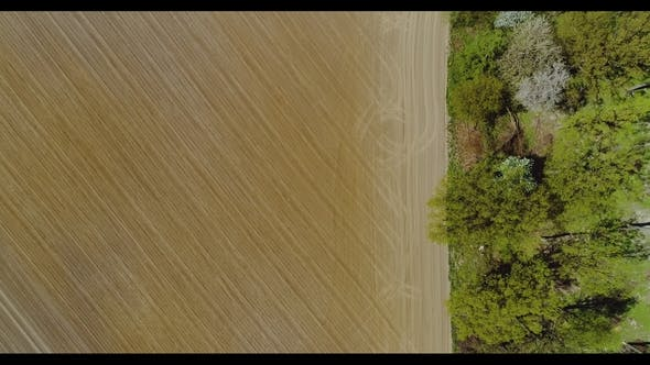 Thumbnail for Agriculture Aerial View of Cultivated Field