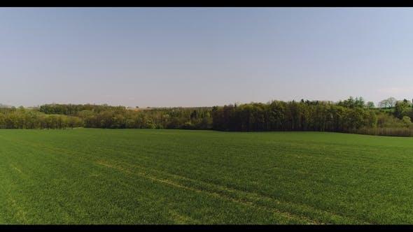 Luftaufnahme des landwirtschaftlichen Feldes.
