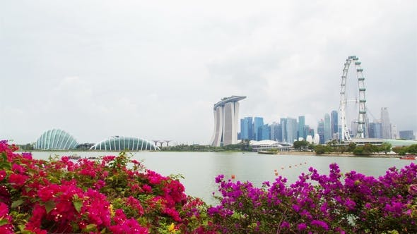 Singapore Cityview with Flowers Cloudiness