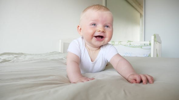 Laughing Little Guy