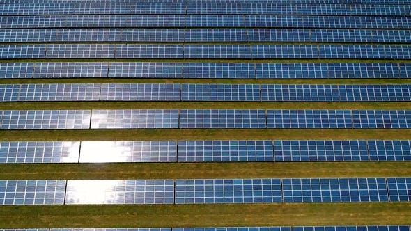 Thumbnail for Aerial Flight Over Solar Panels