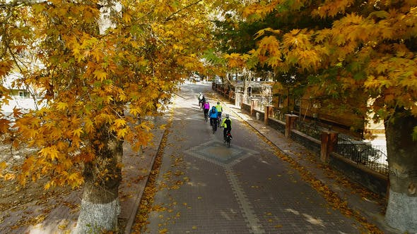 Cover Image for Autumn Cyclists In The City