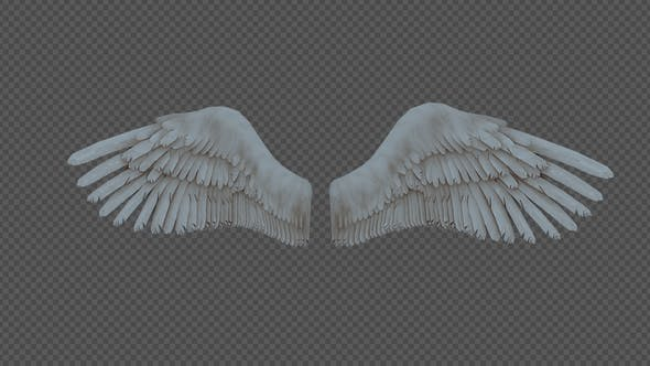 Thumbnail for Double Wings Spread Wings Fly Pack 4In1