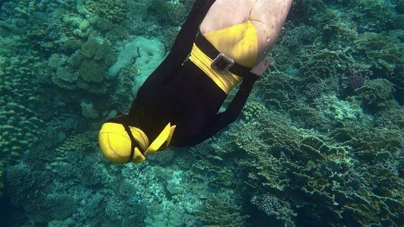 Thumbnail for Freediver Girl Looking at Corals