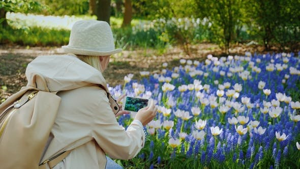 Thumbnail for Young Girl in a Hat Takes a Picture on the Phone of a Beautiful Flower Bed with Tulips