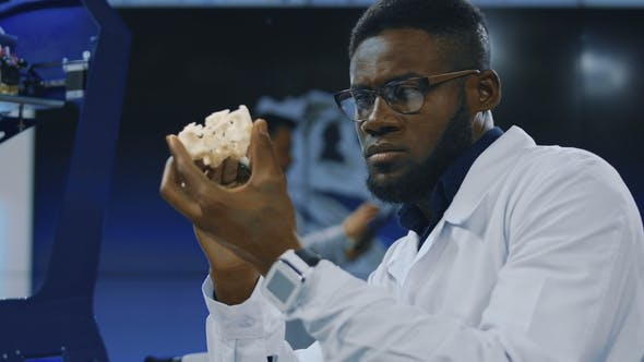 Thumbnail for Medical Researcher Watching 3-D Printed Model