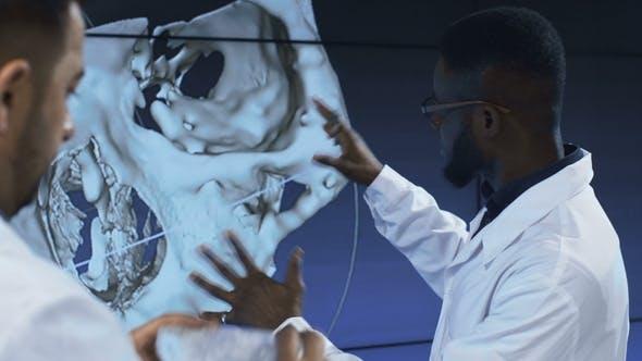 Thumbnail for Medical Scientists Investigating Human Skull