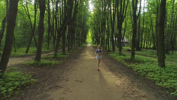 Thumbnail for Young Healthy Woman Is Running in Beautiful Green Alley in the Sunny Morning. Aerial View