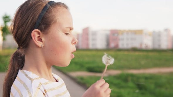 Cover Image for Cute Little Girl Blowing on Dandelion on City Lawn