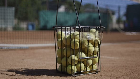 Thumbnail for Wire Bucket Full of Tennis Balls