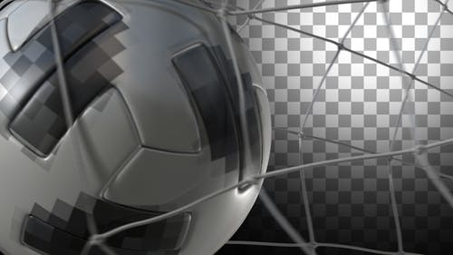 Soccer Ball - Telstar Transitions