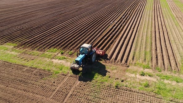 Thumbnail for Agricultural Work on a Tractor Farmer Sows Grain.