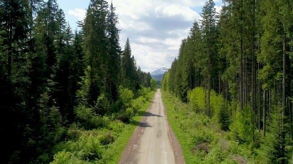 Thumbnail for Aerial View of Road To Mountain Hoverla, Ukraine Carpathian Mountains.