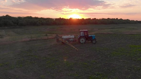 Thumbnail for Aerial View of an Irrigated Field Tractor with Fresh Young Potatoes at Sunset