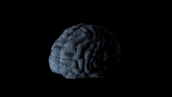 Thumbnail for Synthetic Artificial Brain