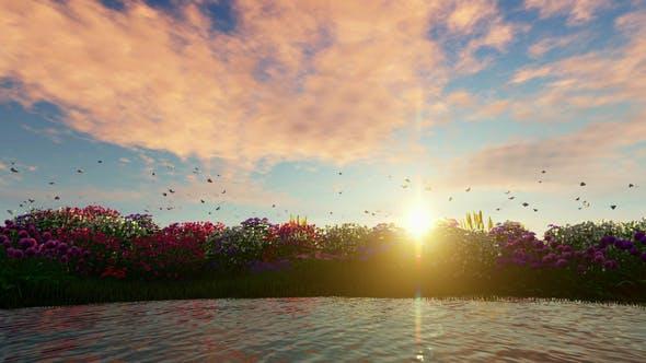 Thumbnail for Blumen und Gras Hintergrund