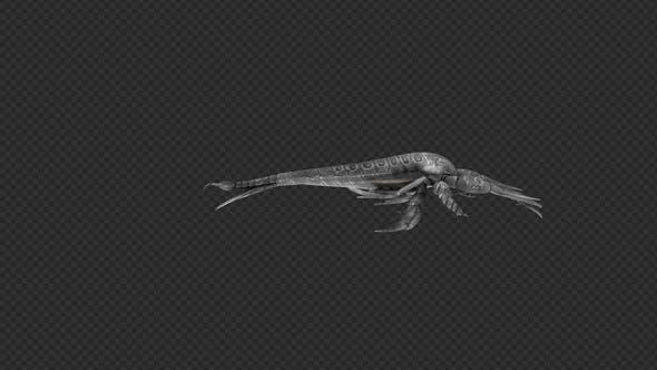 Thumbnail for Paquet de griffe d'attaque d'Eurypterid 4 en 1