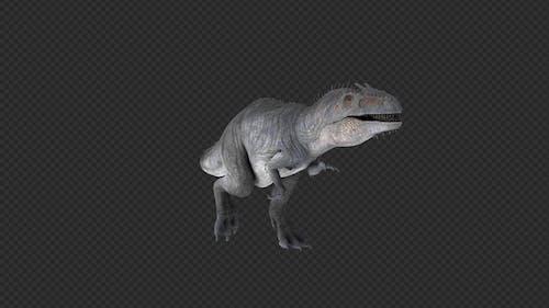 Giganotosaurus Walk And Swim Pack 8 In 1