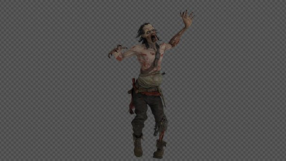 Thumbnail for Zombie Run And Walk Pack 8in1