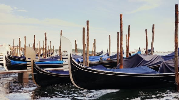 Thumbnail for Side View: Gondolas on the Pier. Against the Cityscape of Venice