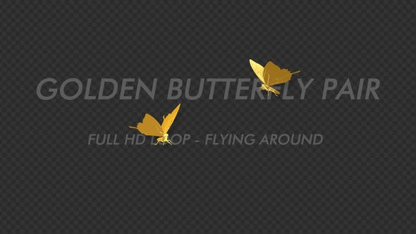 Thumbnail for Golden Butterfly - Romantic Pair - Flying Around