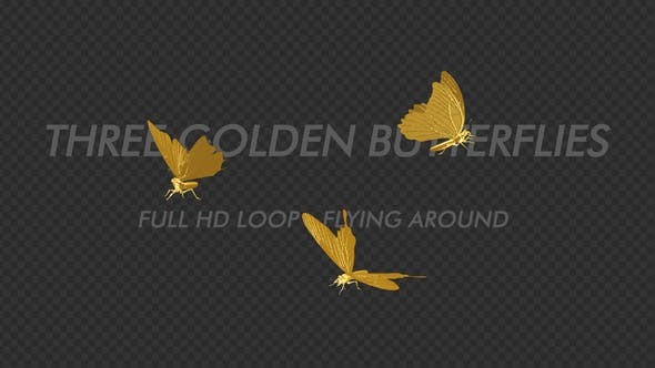 Thumbnail for Golden Butterflies - Three Flying Around - Transparent Loop