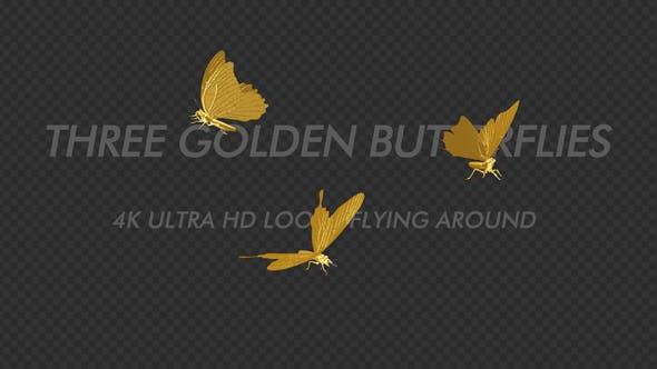 Thumbnail for Golden Butterflies - Three Flying Around - Transparent Loop - 4K