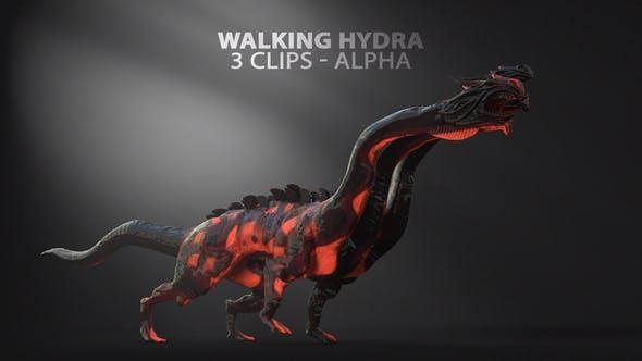 Thumbnail for Walking Three Headed Hydra