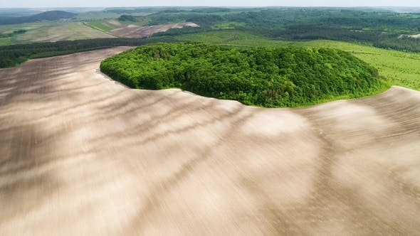 Thumbnail for Beautiful Space Landscape. Aerial View of Mystical Green Trees Island on a Field