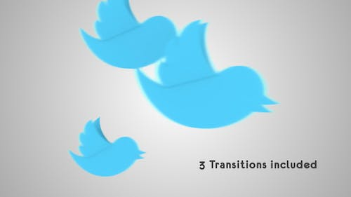Twitter Transitions