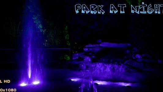 Thumbnail for Park At Night