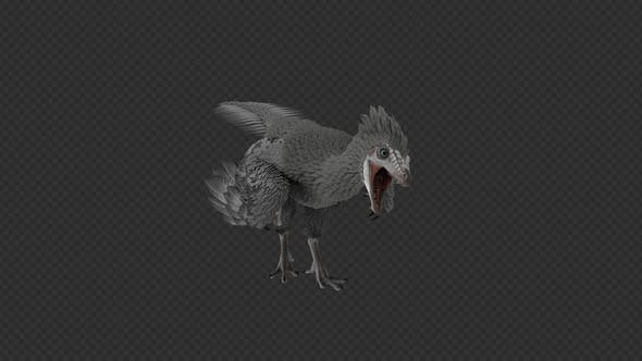 Archaeopteryx Bite And Cuddle Pack 8 In 1