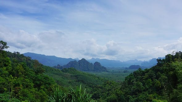 Thumbnail for Rainforest in Khao Sok National Park,