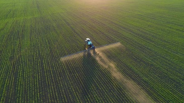 Thumbnail for Aerial Drone Footage. Following Tractor Sprayer on Soybean Fields at Sunset
