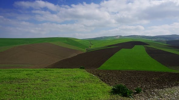 Thumbnail for Agriculture Fields on Hills in Morocco