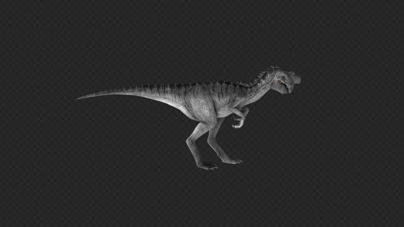 Oviraptor Eat Roar Swim 6 In 1