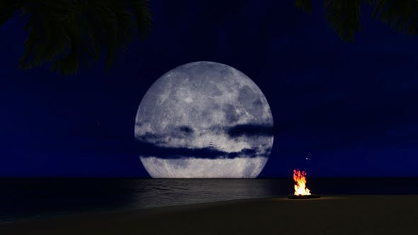 Thumbnail for Slow Motion Campfire On The Beach
