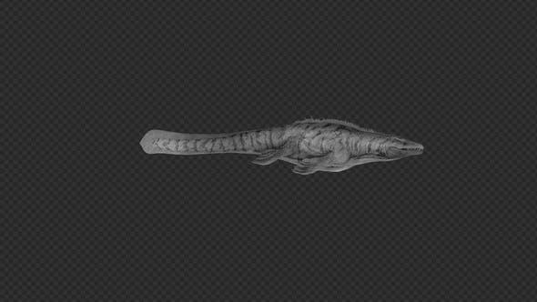 Mosasaurus Swim And Swim Run And Slow Pack 6In1
