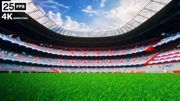 Cover Image for Skyblue Flying On Grass In Stadium 4K