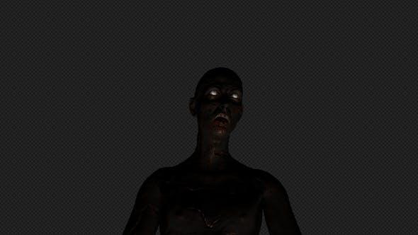 Thumbnail for Burned Zombie 2