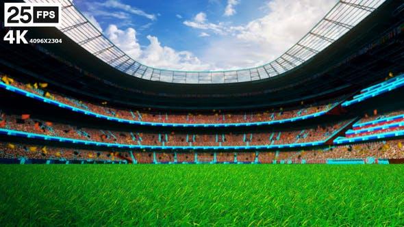 Thumbnail for Black Flying On Grass In Stadium 4K