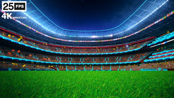 Thumbnail for Black Flying On Grass In Stadium Night