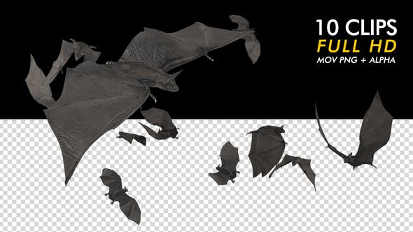 Thumbnail for Bats - Kit Pack of 10