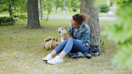 Happy Dog Owner Attractive African American Girl Is Stroking Her Purebred Dog and Talking To It
