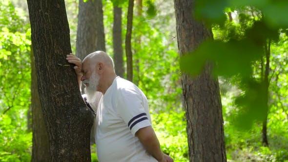 Thumbnail for Senior Man entspannt und lehnte sich am Baumstamm im Sommerwald