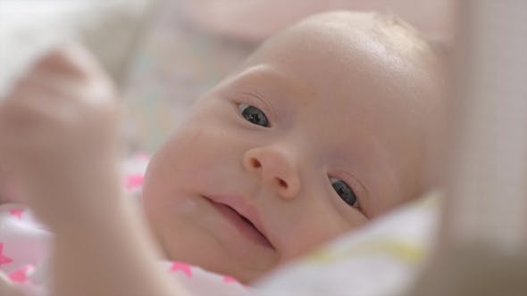 Thumbnail for Indoor Portrait of Lovely Active Two Months Baby Girl